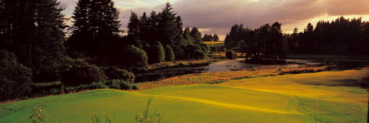 The 8th hole of the Queen's course at The Gleneagles Hotel