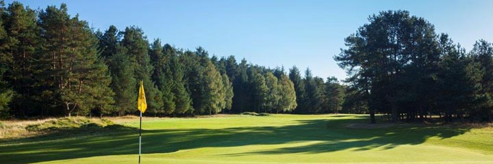 A view of Ladybank golf course